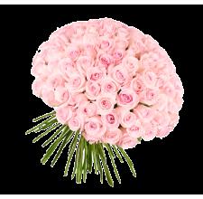 101 розовая роза (импорт)