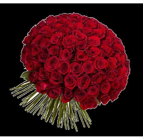 101 красная роза (импорт)