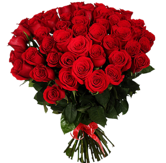51 импортная роза