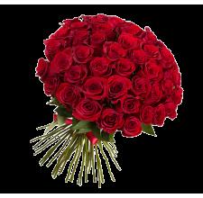 51 красная роза (импорт)
