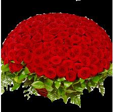 """101,201,301 красная роза""""Гран-При""""в корзине"""