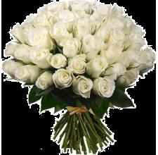51 белая роза. Доставка цветов Киев. Заказ цветов Киев.