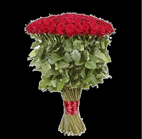 101 метровая роза (букет для любимой)