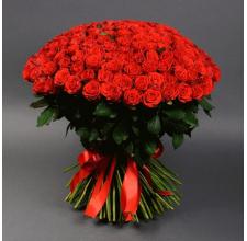 151 роза Эль-Торо