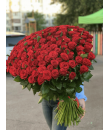 """Царский жест """"151 метровая роза"""""""