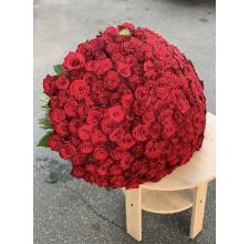 201 красная роза Гран-При