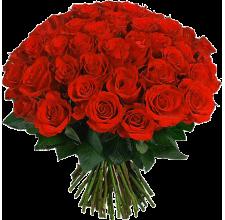 Букет алых роз «Классика»