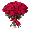 51 красная роза. Доставка цветов Киев. Заказ цветов Киев.