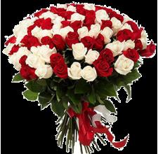 """101 красная и белая роза  """"Венеция"""" Доставка цветов Киев. Заказ цветов Киев."""