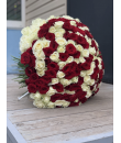 201 красная и белая роза