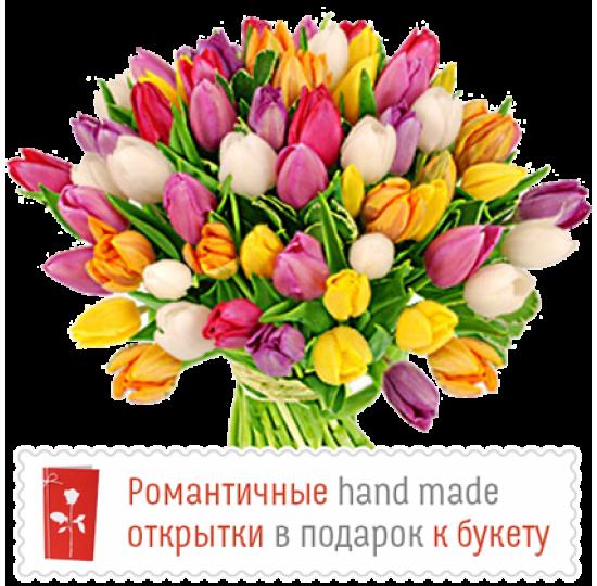 101 тюльпан микс