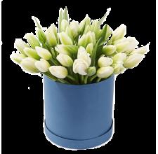 25 белых тюльпанов  в шляпной коробке