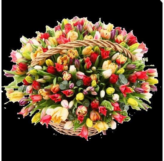 """Корзина тюльпанов """"Весенние нотки"""""""