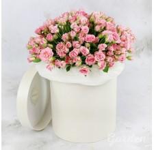 """25 кустовых роз в шляпной коробке """"Aqua"""""""