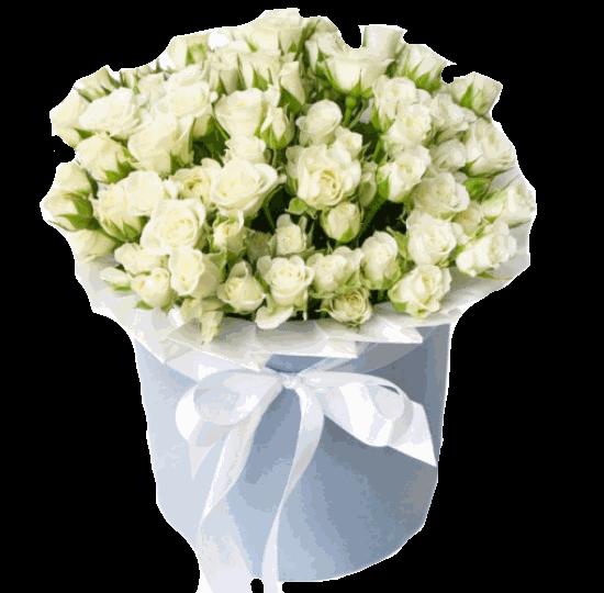 """25 белых кустовых роз в шляпной коробке """"Сияние"""""""