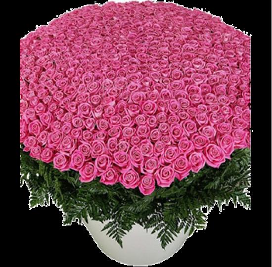 """Букет из роз """"Море нежности"""""""